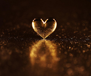 heart, love, and photography image