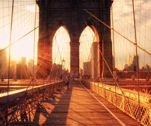 bridge, sunset, and photography image