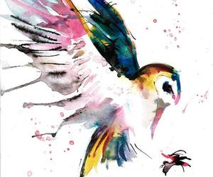 art, owl, and bird image