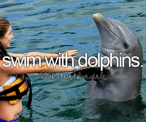 dolphin, water, and before i die image