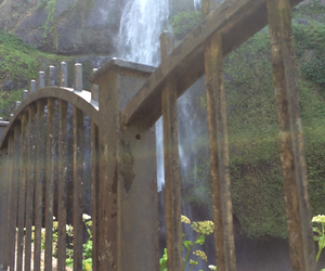 nature, oregon, and waterfall image