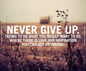 quotes, never give up, and inspiration image