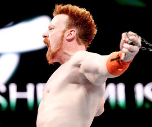 superstar, wwe, and sheamus image
