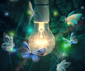 butterfly, light, and green image
