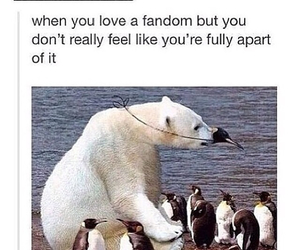 fandom, so true, and tumblr image
