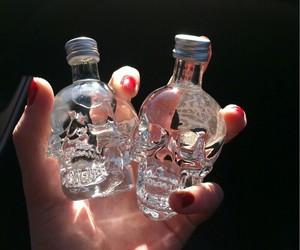 skull, vodka, and drink image