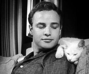 marlon brando, cat, and black and white image