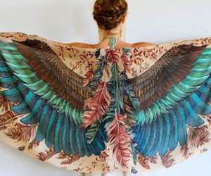 wings colors fly image