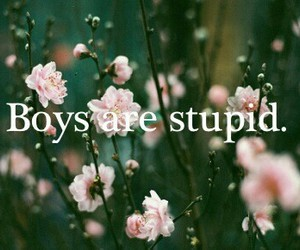 boy, stupid, and flowers image