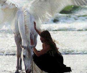 horse, fantasy, and beach image