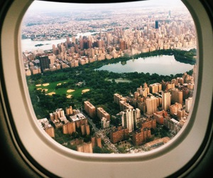beauty, Central Park, and flight image