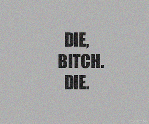 bitch, die, and text image