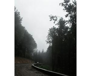 fog, grunge, and landscape image
