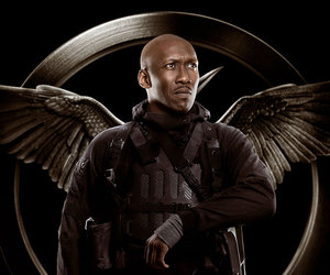 boggs, mockingjay, and the hunger games image