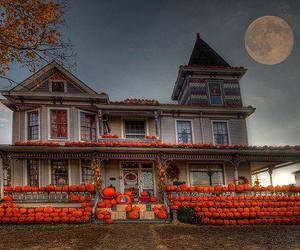 autumn and pumpkin home image