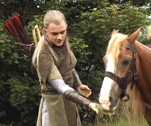 Legolas, lord of the rings, and horse image
