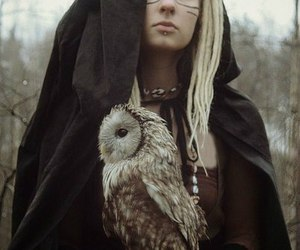 owl, magic, and witch image
