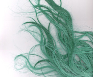 curls, dyed hair, and green image