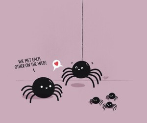 funny, spider, and web image