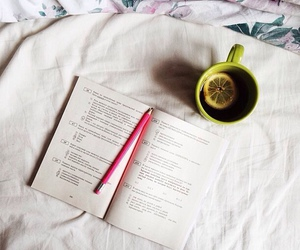books, exam, and notes image