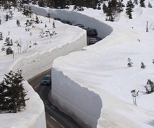 funny, canada, and snow image