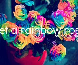 rainbow, rose, and bucket list image