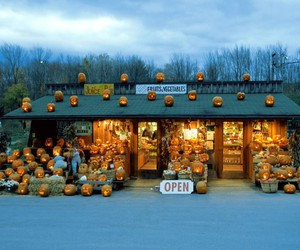 Halloween and pumpkins image