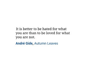 hate, be yourself, and quotes image