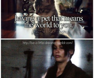 funny, the hunger games, and just girly things image