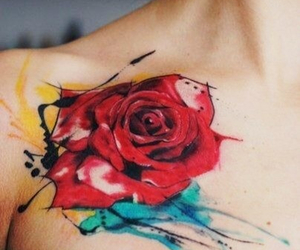 cool, flower, and red rose image