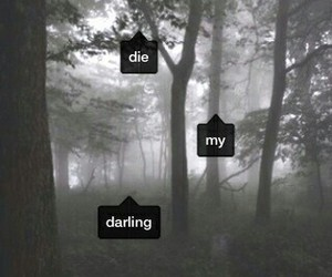 darling, die, and my image