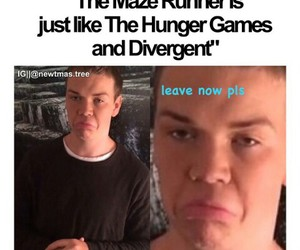 books, divergent, and the maze runner image