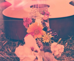 flower, guitare, and pink image