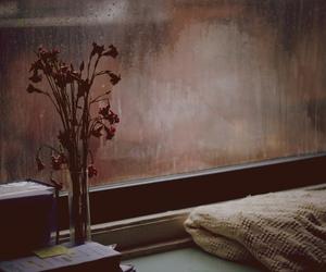 flowers, rain, and window image