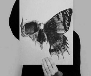 butterfly and skull image
