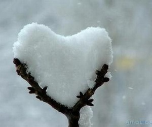 heart, snow, and winter image
