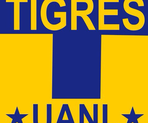 tigres and uanl image