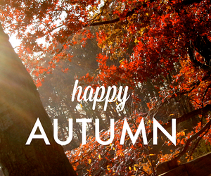 autumn, fall, and happy image