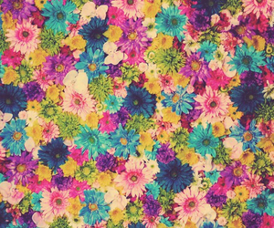 colors, flowers, and fondo image
