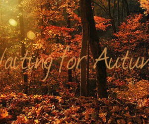 autumn and waiting image
