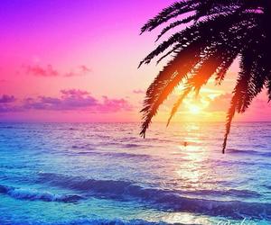 beach, Dream, and sunset image