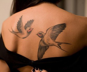 birds, tattoo, and free image