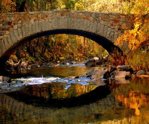 autumn, bridge, and nature image