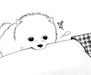 manga, dog, and cute image