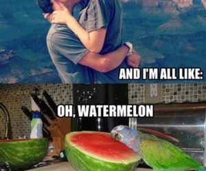 oh watermelon image