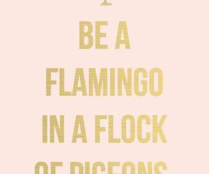 quotes, flamingo, and pink image