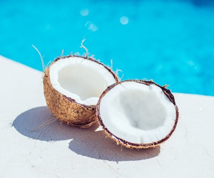 coconut, summer, and pool image