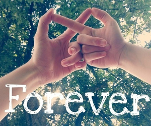 friends, love, and forever image