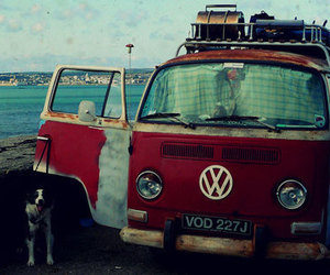 dog, car, and vintage image