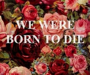 quote, born to die, and lana del rey image